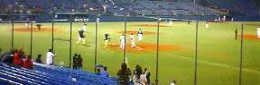 古田さんが、1000打点を 達成して、つばくろうと つばみちゃんが お祝いにかけつけるところ